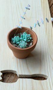 樹脂粘土で葉っぱ系の多肉植物